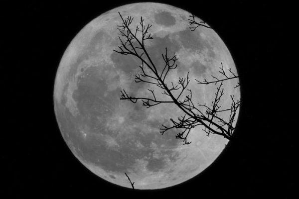 Quick Class: Moon Practice #2